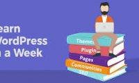WordPress基础操作教程